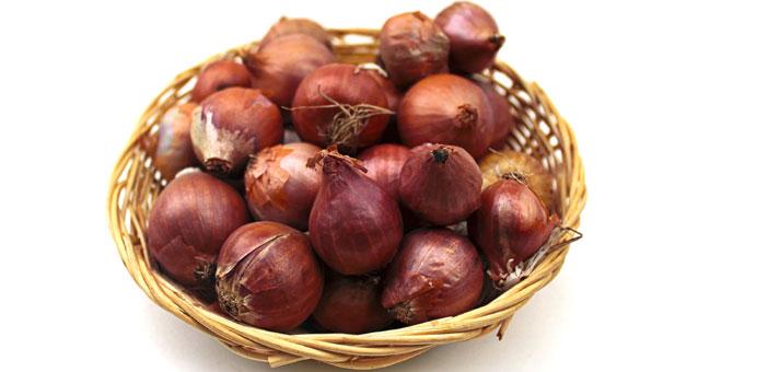 onion allergy