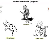 Top 15 Herbs For Alcohol Withdrawal