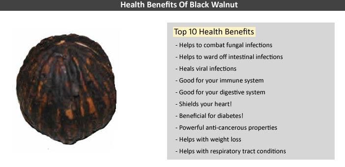 Health Benefits Black Walnuts