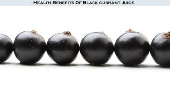 Black Currant Fruit
