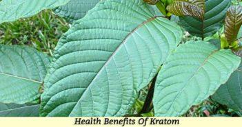 Health Benefits Kratom
