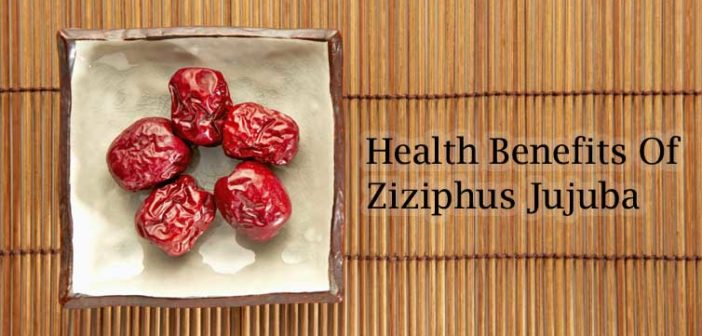 12 Health Benefits Of Ziziphus Jujuba