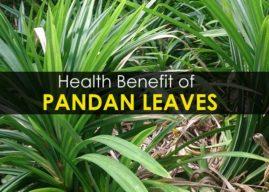 10 Health Benefit of Pandan Leaves